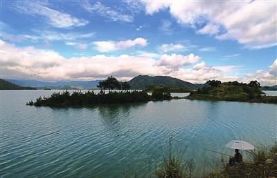去千岛湖感受春天绿的气息