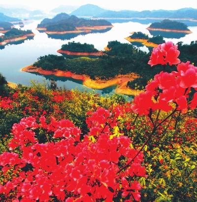 千岛湖,心灵的绿洲
