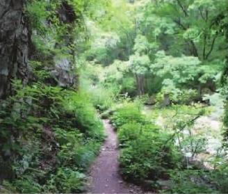 秦岭国家森林步道        本版图片由国家林业局供图