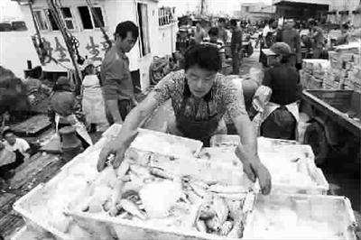 这里的海鲜市场火了