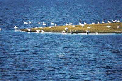 月亮湖水面2000余亩,水深2至4米