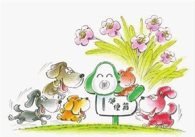 """国庆节前后,黄浦区10个街道119个小区将渐次推出文明养犬""""便便箱""""."""