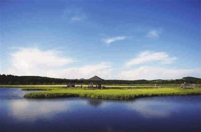 游客在塞罕坝国家森林公园七星湖景区游玩 新华社记者 王晓 摄