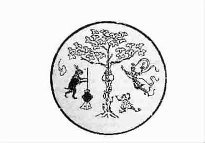 娑罗树为龙脑香科常绿乔木