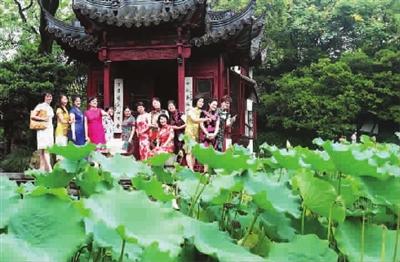 新民四季花展·2013荷
