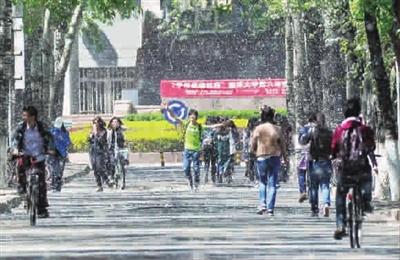 4月8日,天津,南开大学校园内,行人在漫天飞舞的柳絮中前行     cfp