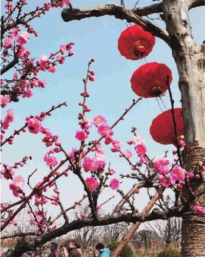树枝超轻粘土梅花