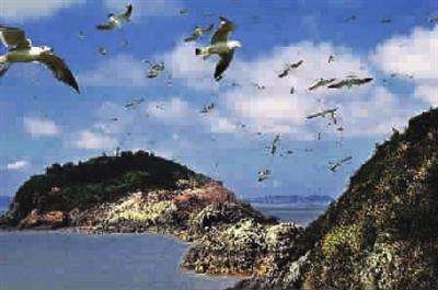 作为《欢乐颂2》拍摄地的泰国普吉岛和国内的上海,舟山,婺源等地的