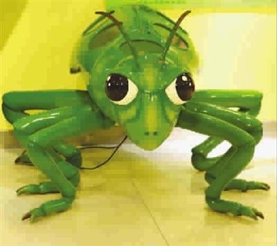 馆内昆虫装置; 碧绿碧绿的大蝈蝈睁着卡通的大
