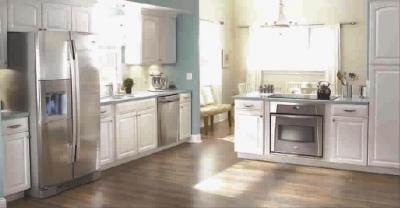 爱适易于1927年发明了第一台食物垃圾处理器,即推动了一场厨房革命.