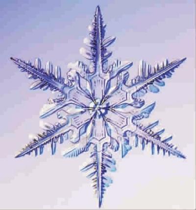 复杂雪花步骤图片简单