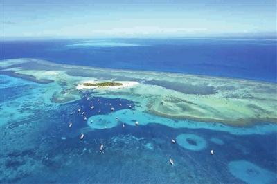 """""""海岛新贵""""新喀里多尼亚"""
