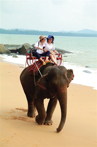 大海边骑大象观日落   甲米的白沙,碧浪和巨石,和谐优美又